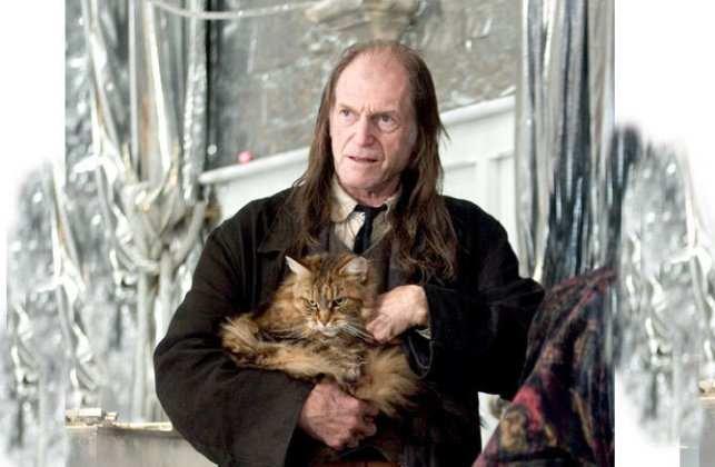 Мейн-кун снялся в фильмах о Гарри Поттере
