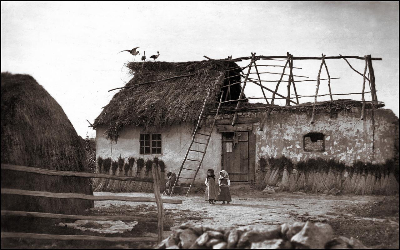 Дом возле Рогатина
