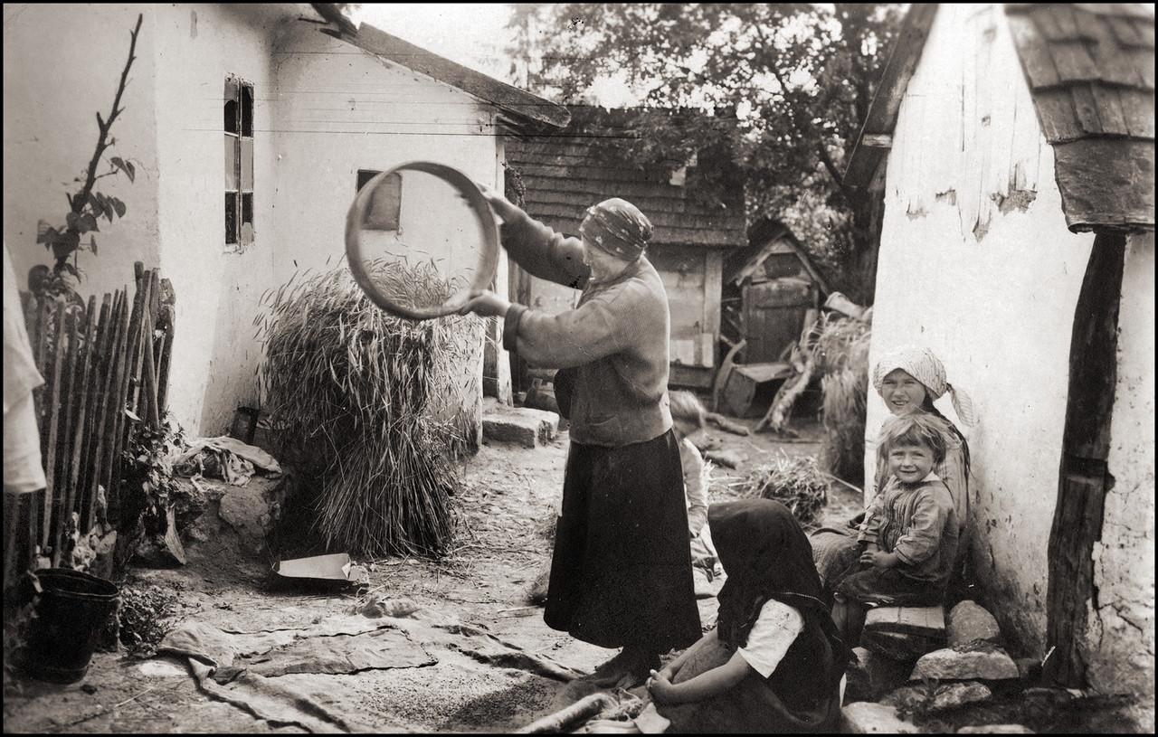 Чистка зерна
