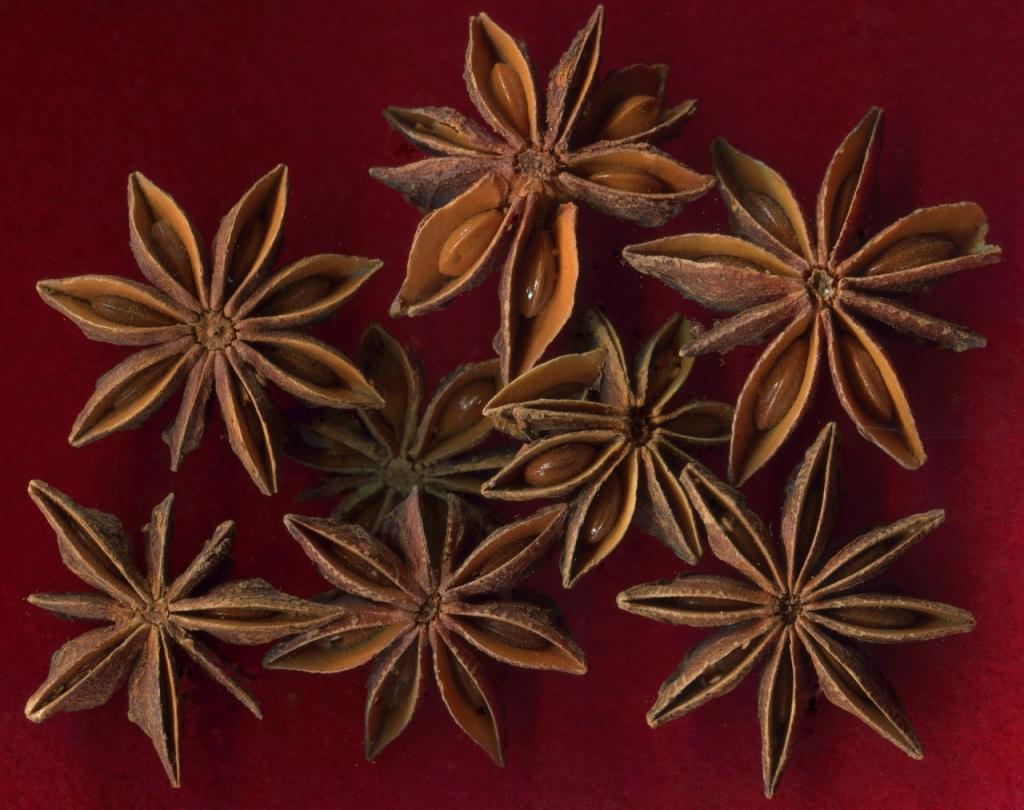Семяна Аниса