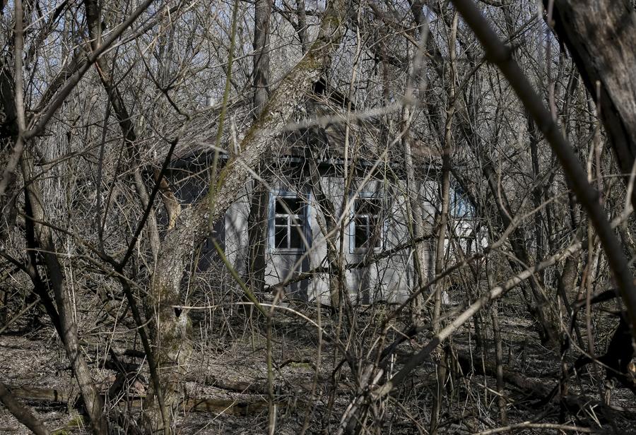 """Дом в заброшенном селе """"Залесье"""" вблизи Чернобыльской АЭС, 28 марта 2016 года."""