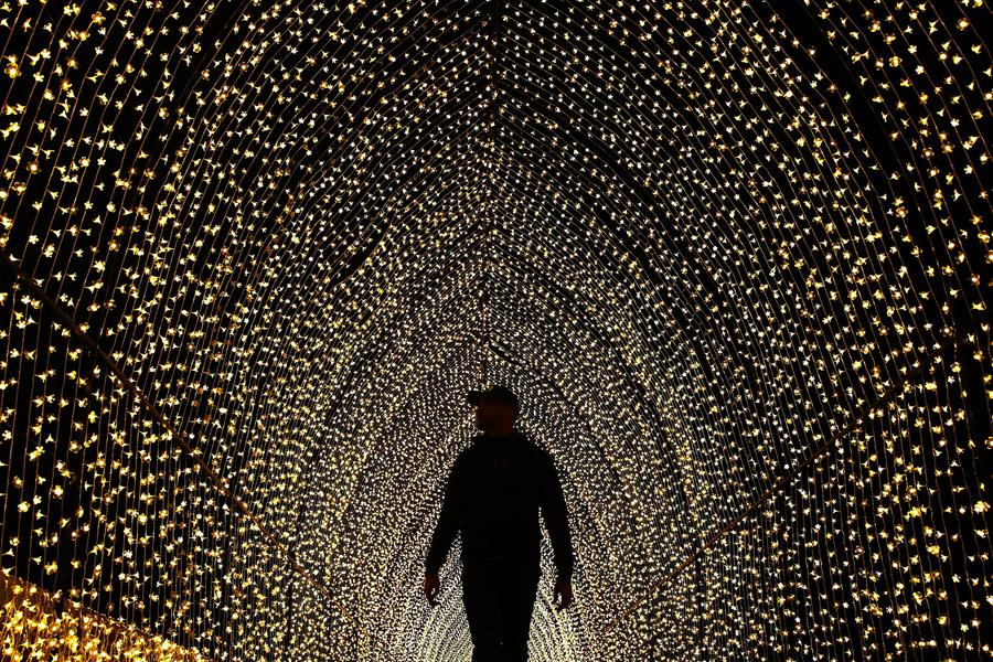 """Человек заходит внутрь """"Собора света"""" в Королевском Ботаническом саду, 25 мая 2016 года в Сиднее, Австралия."""