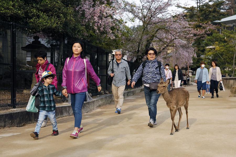 Жители Хиросимы, 10 апреля 2016 года.