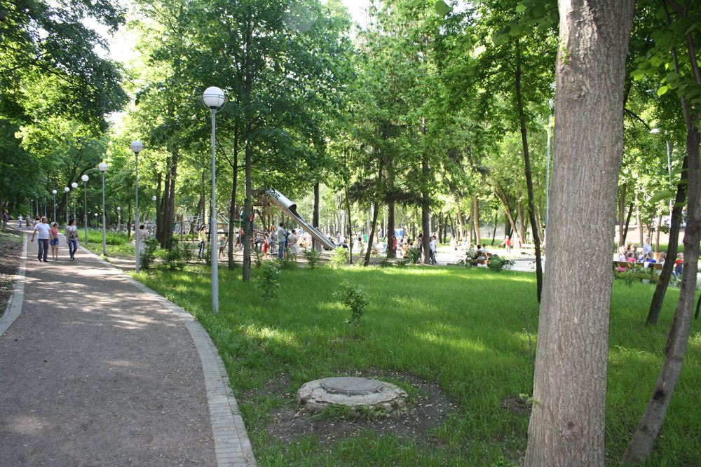Dinamo_park_2016 (4)