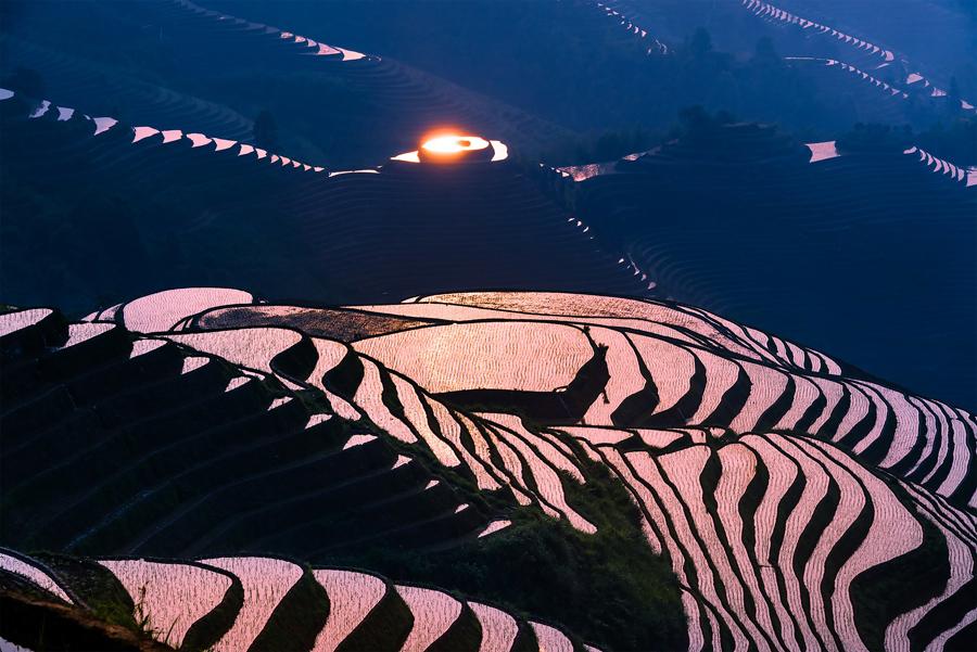Солнце отражается от поверхности рисовых полей в Китае.