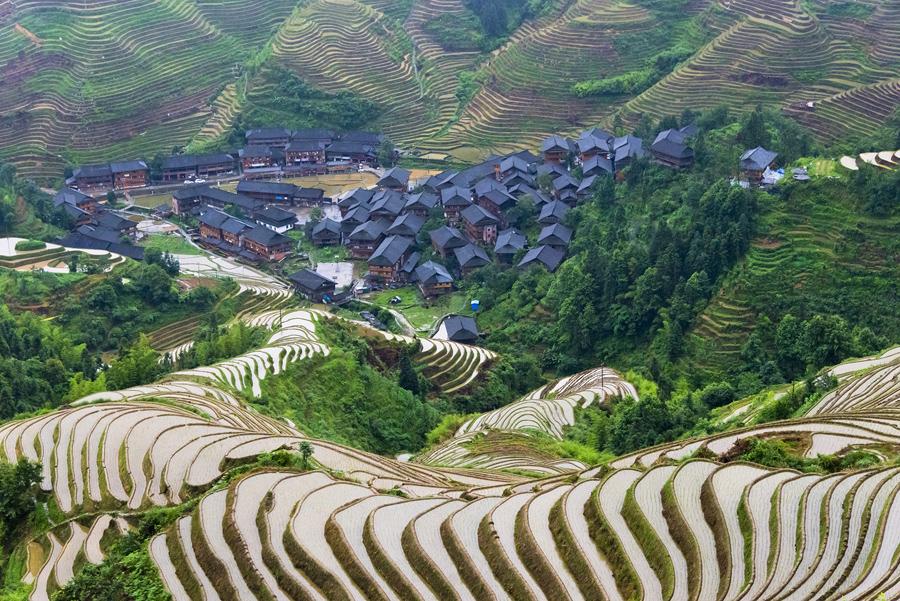 Деревенские дома и заполненные водой рисовые поля в горах, Longsheng, провинция Гуанси, Китай.