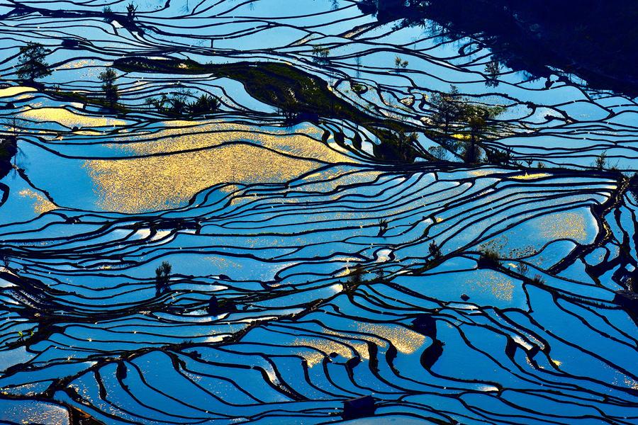 Снимок сделан 20 февраля 2016 года, рисовые террасы на юго - западе Китая провинции Юньнань.
