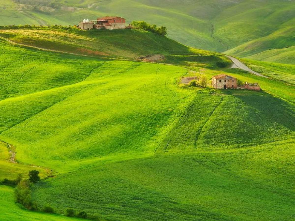 Italy_bute_001