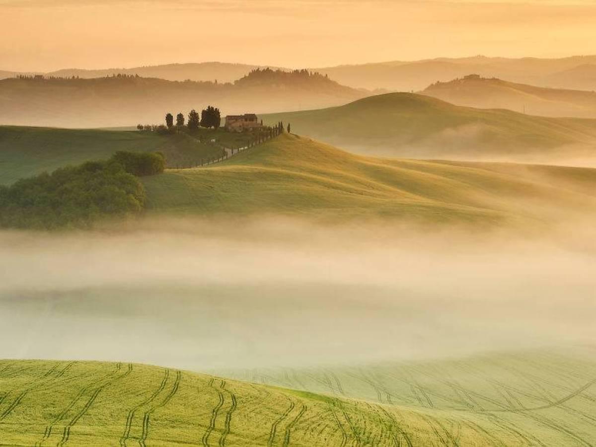 Italy_bute_004