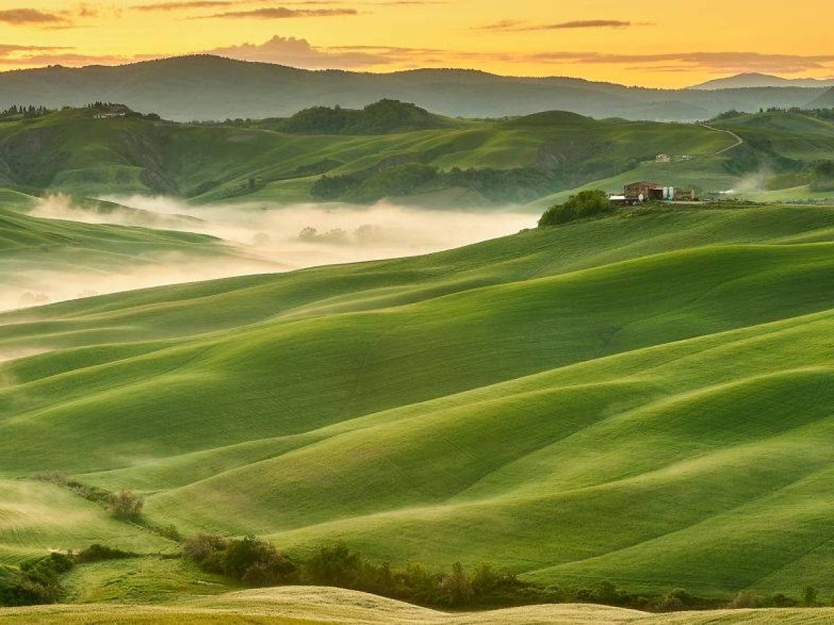 Italy_bute_0045