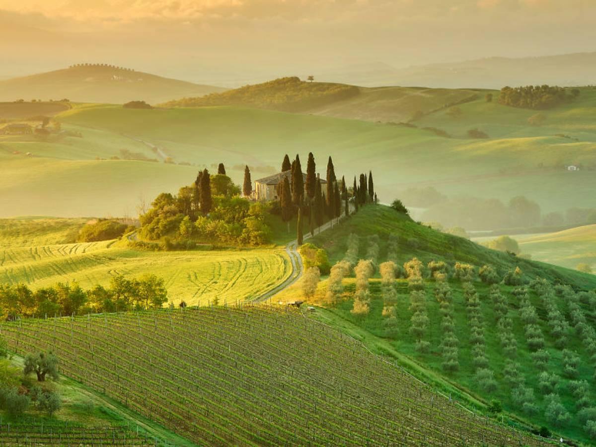 Italy_bute_007