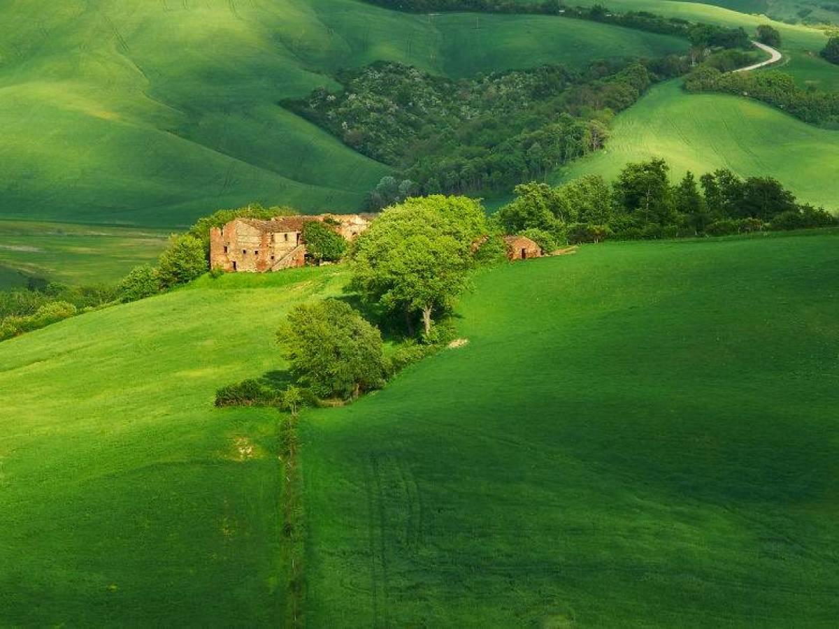 Italy_bute_008