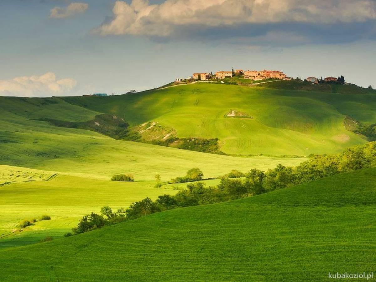 Italy_bute_011