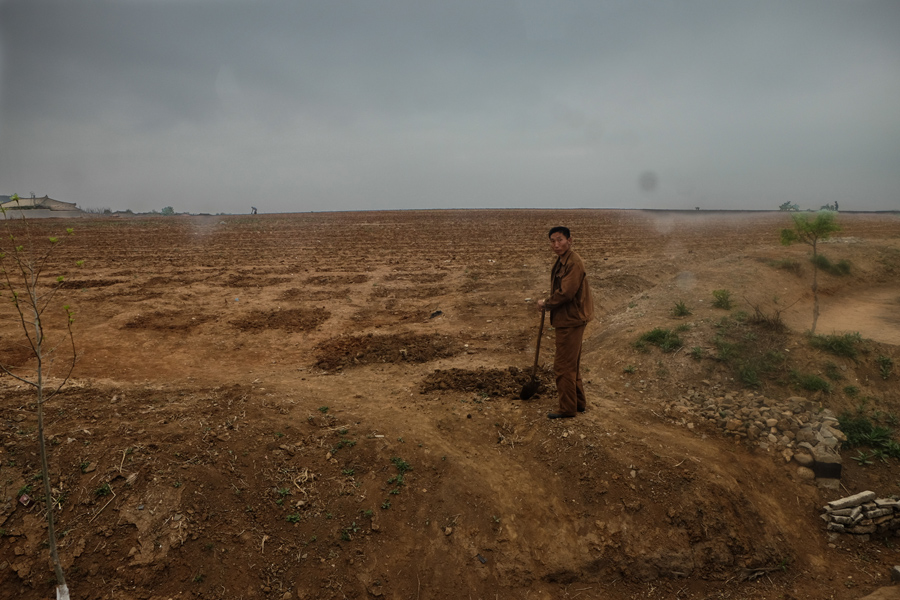 Фермер стоит на засохшем поле в сельской местности Северной Кореи, 3 мая 2015 года.