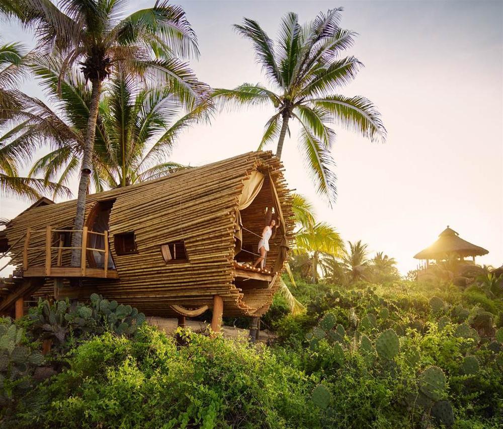treehouse_12