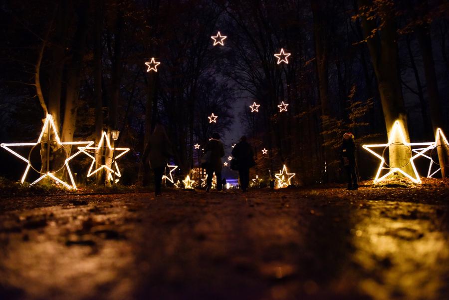 Народ идет вдоль освещенных звездочек во время праздника в ботаническом саду в Берлине, Германия, 18 ноября 2016 года.
