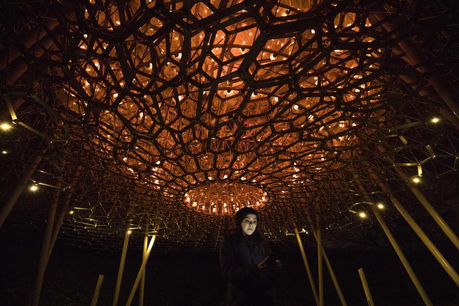 """Женщина стоит под освещенным """"Улием"""" Вольфганга Буттресса в садах Кью, 22 ноября 2016 года в Лондоне, Англия. """"Улий"""" в Кью состоит их тысячи кусков металла, он также усеян сотнями светодиодных ламп. Зажигаясь, светильники издают легкое жужжание, имитируя звуки пчел во время их бурной активности."""