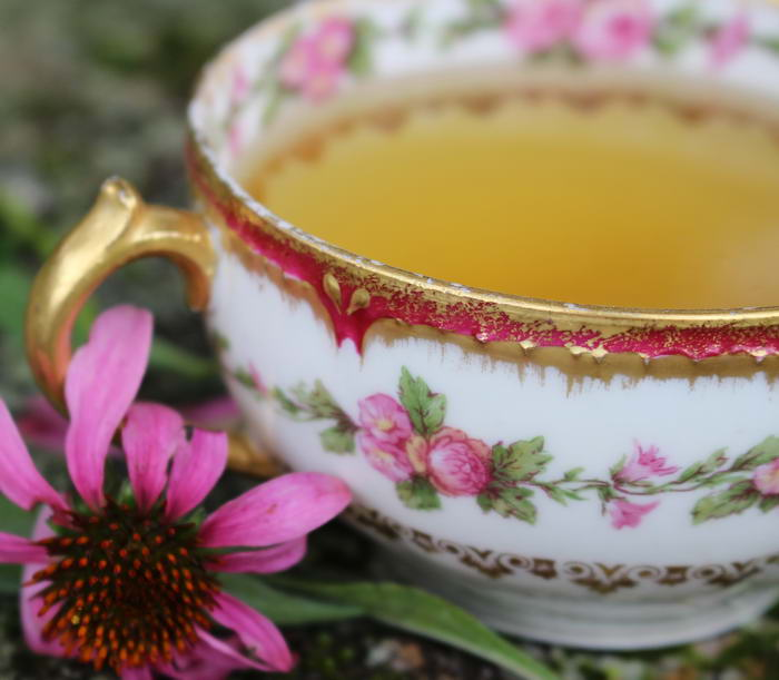 10 видов чая и какая от него польза