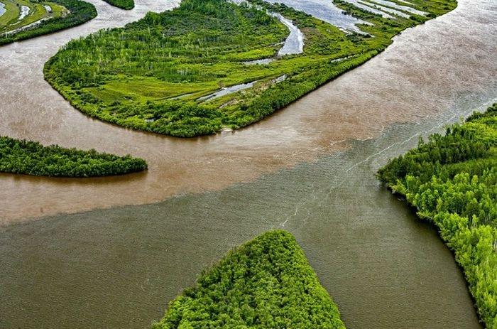 Река Амгунь. Место названо в честь Полины Осипенко. Хабаровский край