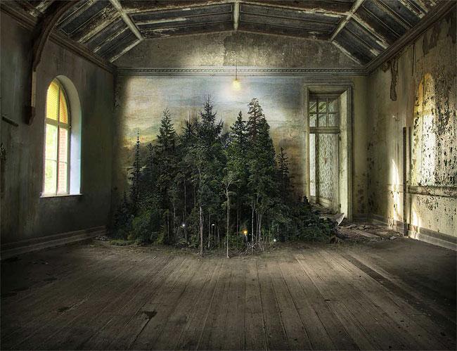 Когда природа вторгается в покинутые места