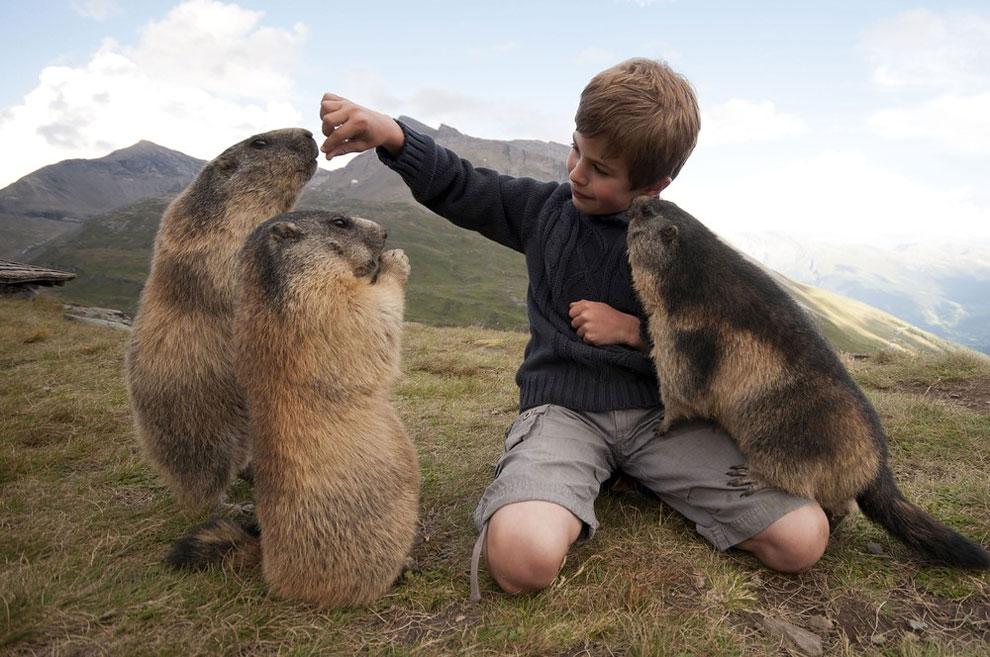 Восхитительные фотографии дружбы австрийского мальчика с застенчивыми суркоми