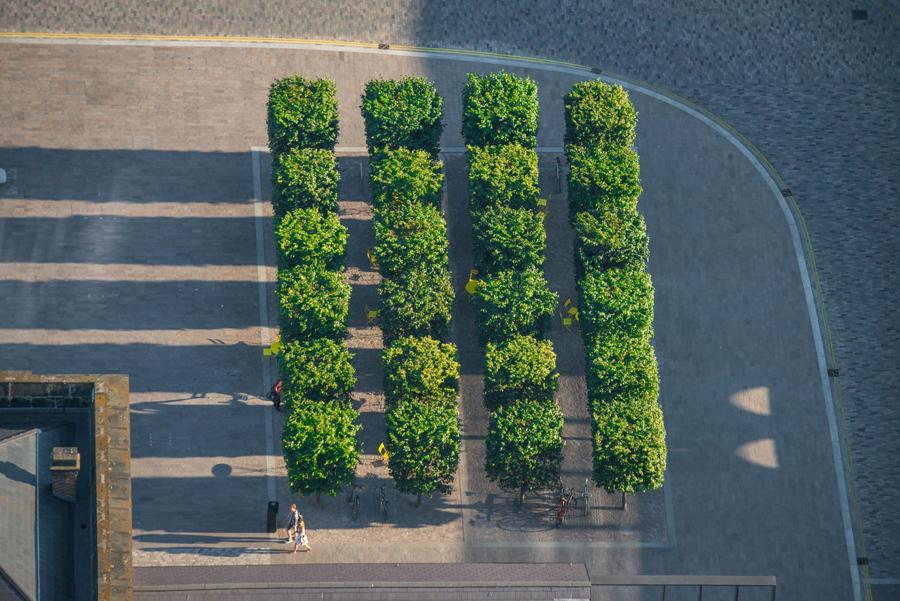 Пара проходит мимо деревьев на площади амбара, Кингс - Кросс.