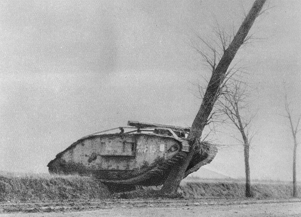 Британский танк, врезался в дерево, рядом с Камбре, Франция, 1917 год.