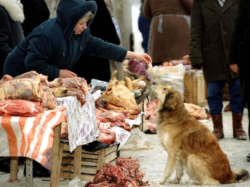Женщина, торгующая на нелегальном рынке на окраине Москвы, кормит бродячего пса, январь 1997 года.