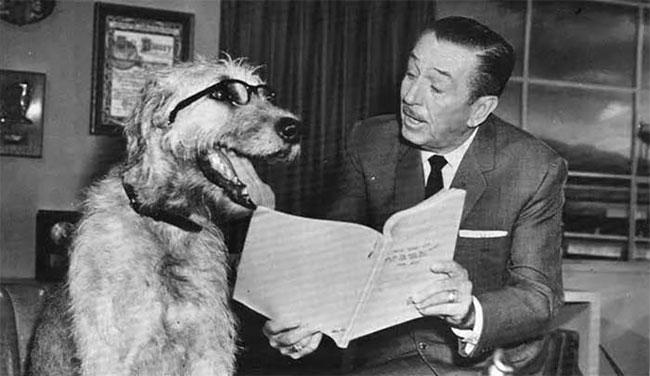 Уолт Дисней с собакой