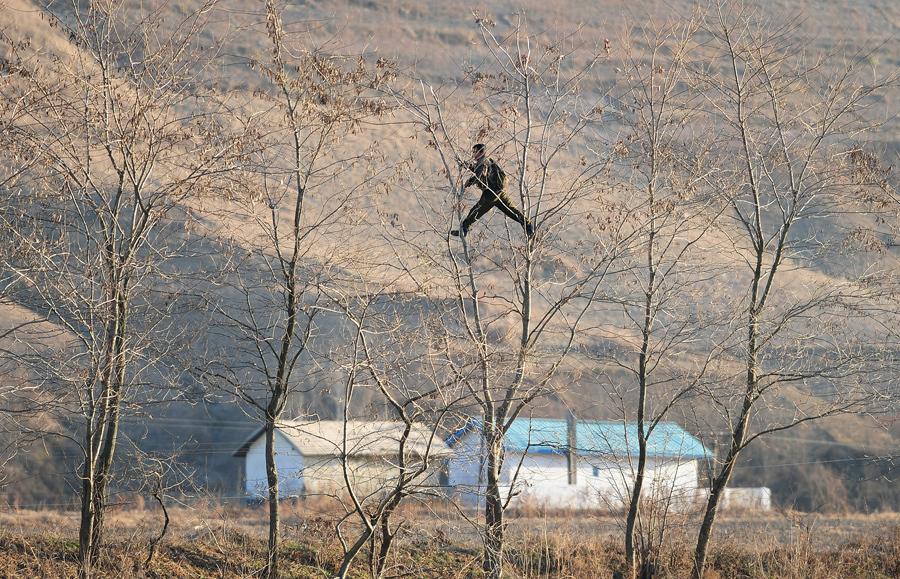 Солдат лазит по деревьям на границе с Китаем, 25 ноября 2010 г.