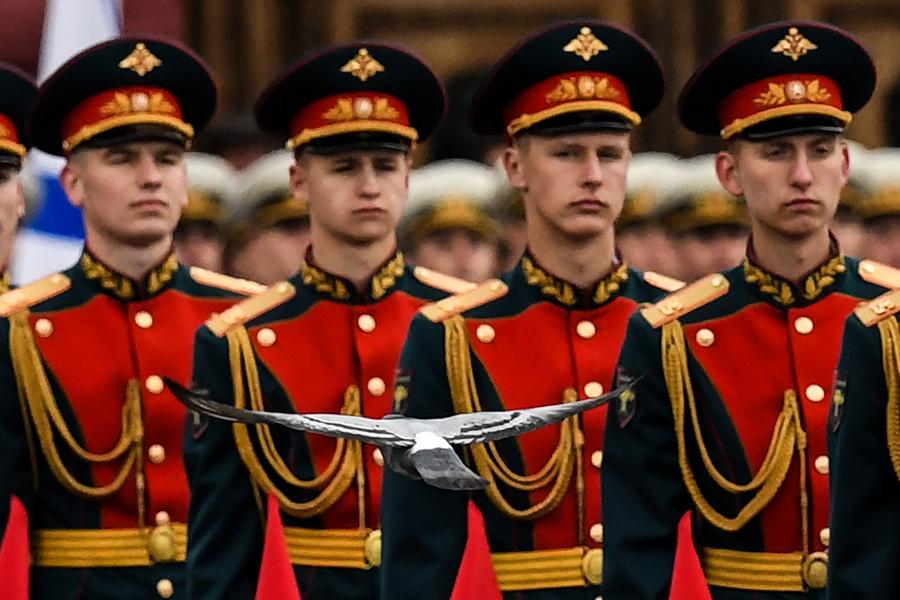 Голубь пролетает мимо солдат почетного караула перед военным Парадом Победы в Москве 9 мая 2017 года.