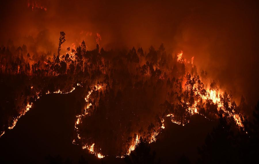 Фотография снятая 18 июня 2017 года показывает лес в огне во время лесного пожара в районе сел Мега Fundeira.