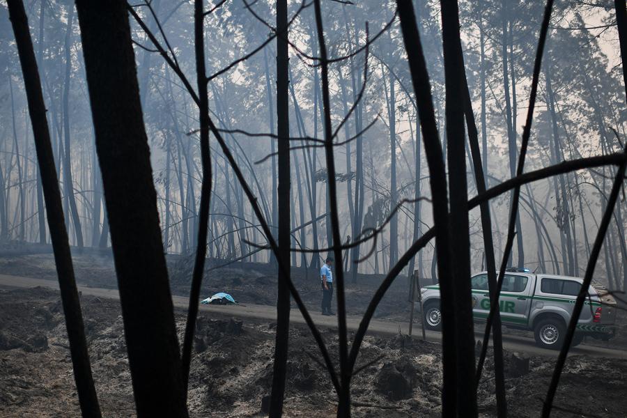 Полицейский стоит у мертвого тела, жертвы лесных пожаров в Pedrogao, 18 июня, 2017.