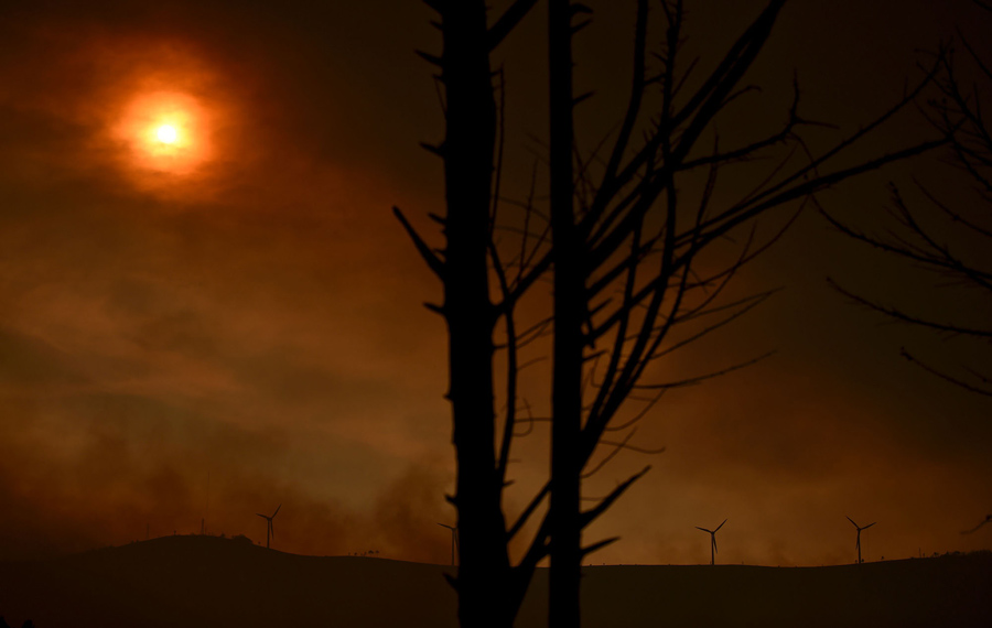 Фотографии смертоносного пожара в Португалии