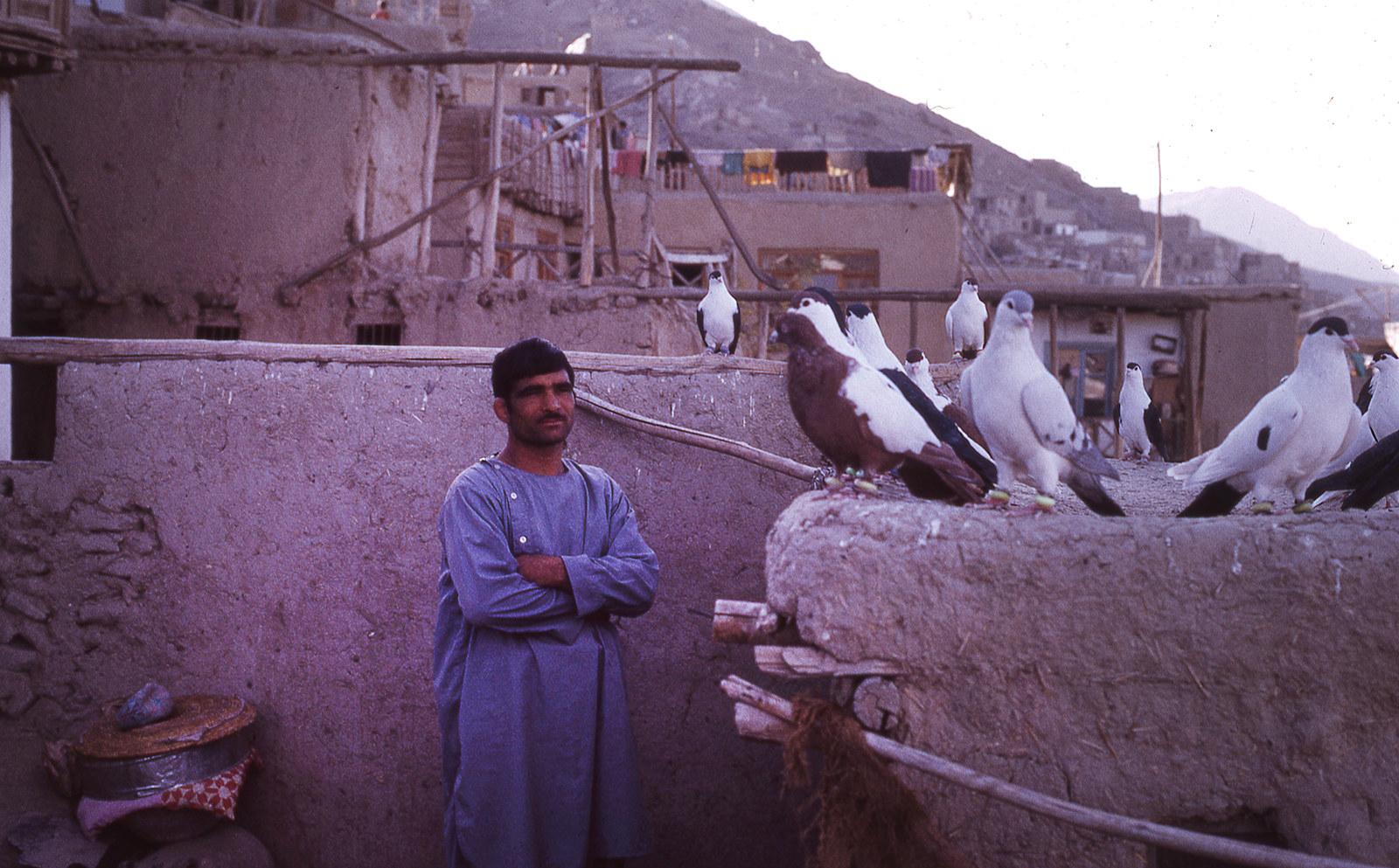 Торговец голубями в Кабуле, 1973