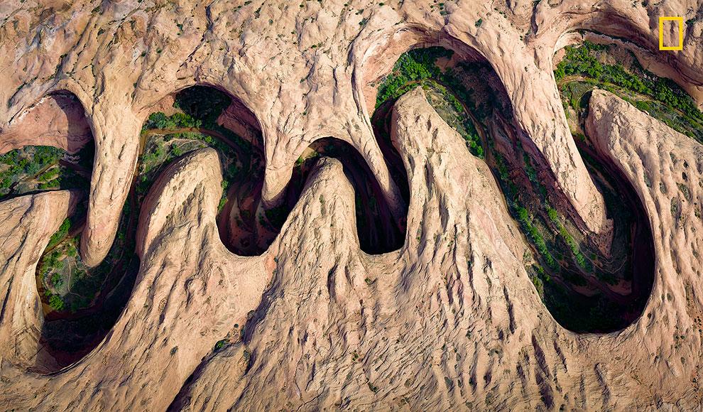 Зеленая растительность у берега реки или прибрежной зоны извилистого каньона в штате Юта.
