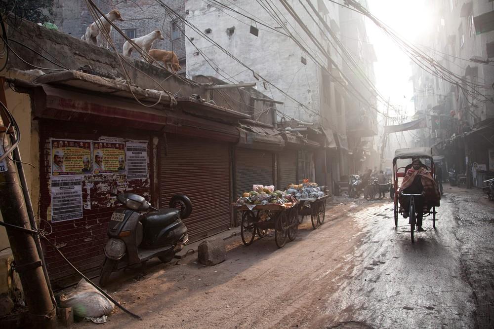 Индия в фотографиях: январь 2018 года