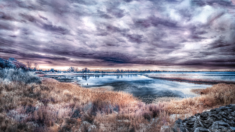 Озеро в зоне отчуждения Чернобыльской АЭС