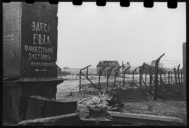 Гатчинский лагерь военнопленных. Ленинградский фронт, 1943 год.: