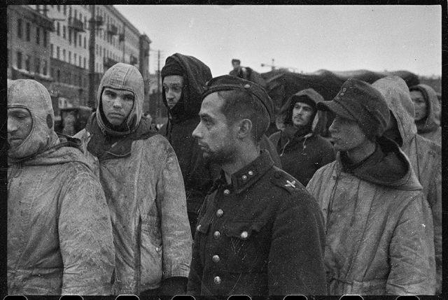 Немецкие солдаты и офицеры, взятые в плен в боях за Ленинград. Ленинградский фронт, 17 января 1944 года: