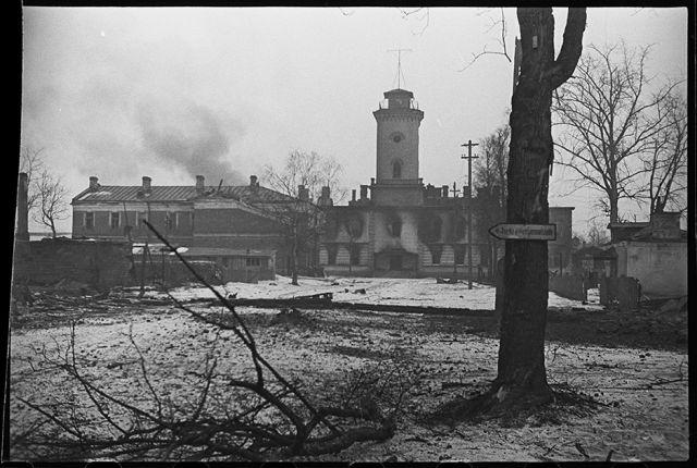 В освобожденной от немцев Гатчине горят подожженные гитлеровцами дома. Ленинградский фронт, 1943 год: