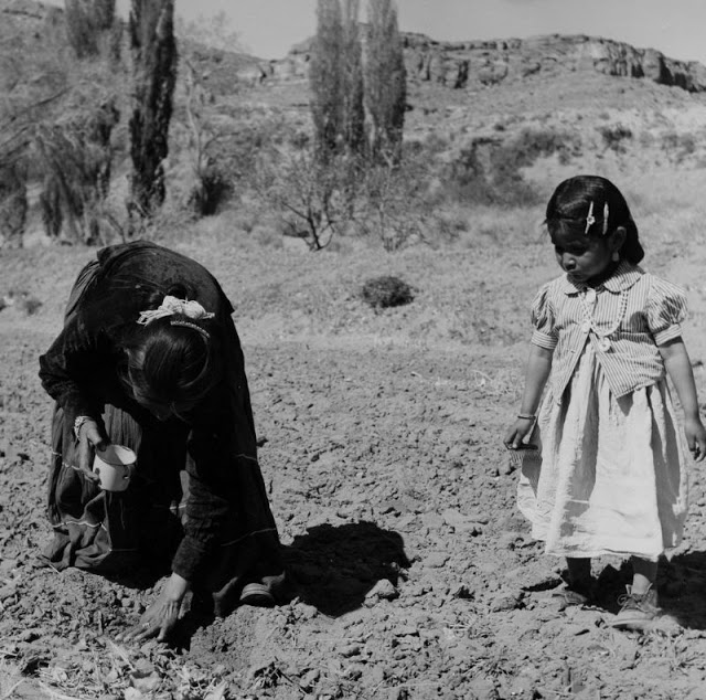 Индейцы навахо в 1940-х годах