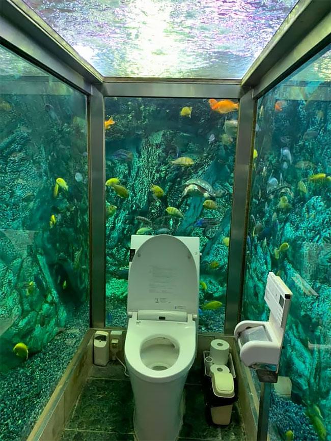 Ресторан в котором есть туалет в аквариуме