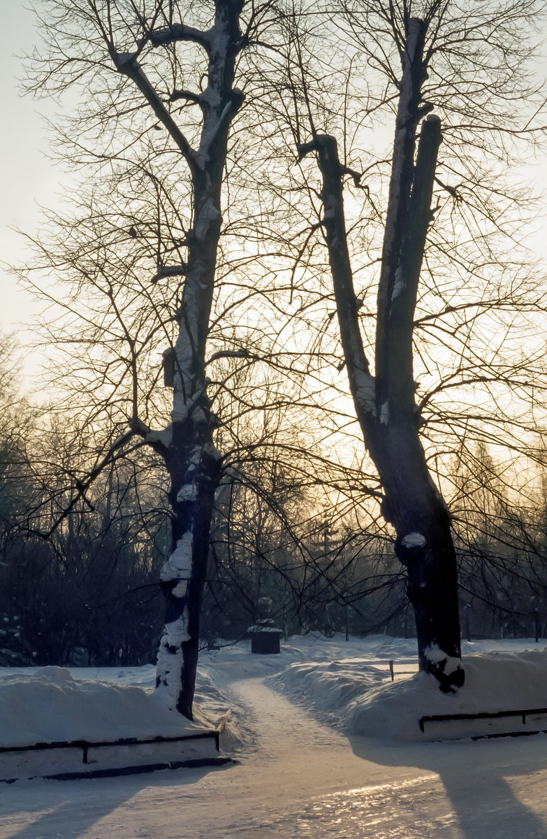 Зима 1976 года в Санкт-Петербурге